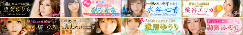 toranoana banner 1024x151 일본 인기 AV배우 모모타니 에리카 소개