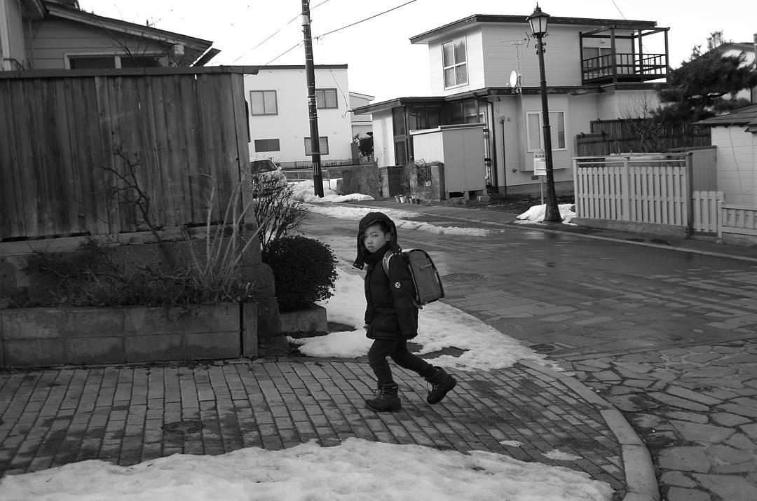 17267428 1840924922814420 5148202230553247744 n 딱 보니까 학교 가기 싫구나. 그래도 굿모닝~ 홋카이도