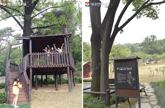 seoul camping4 서울 시내 공원 및 캠핑정보! 초안산 캠핑장 개장