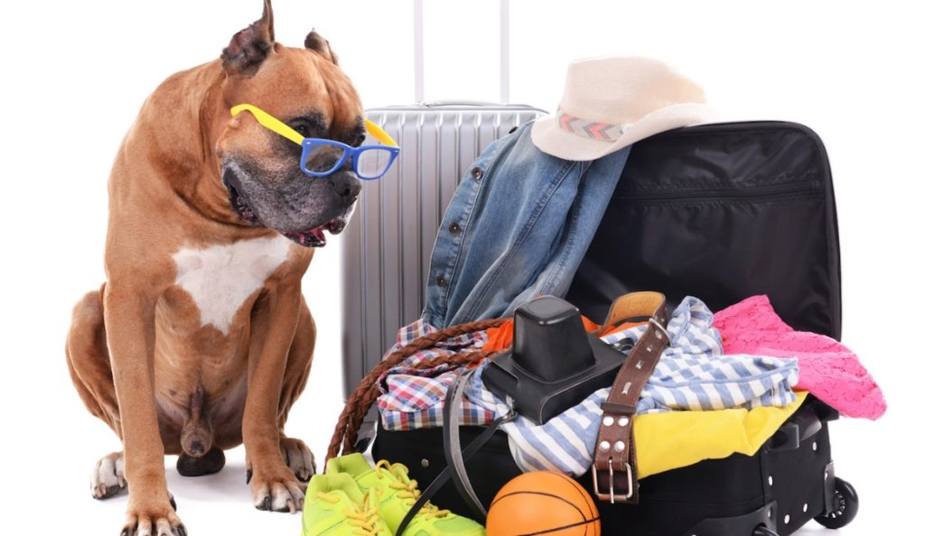 travel packing tips 1024x594 해외여행 짐싸기 팁! 스마트한 짐 꾸리기