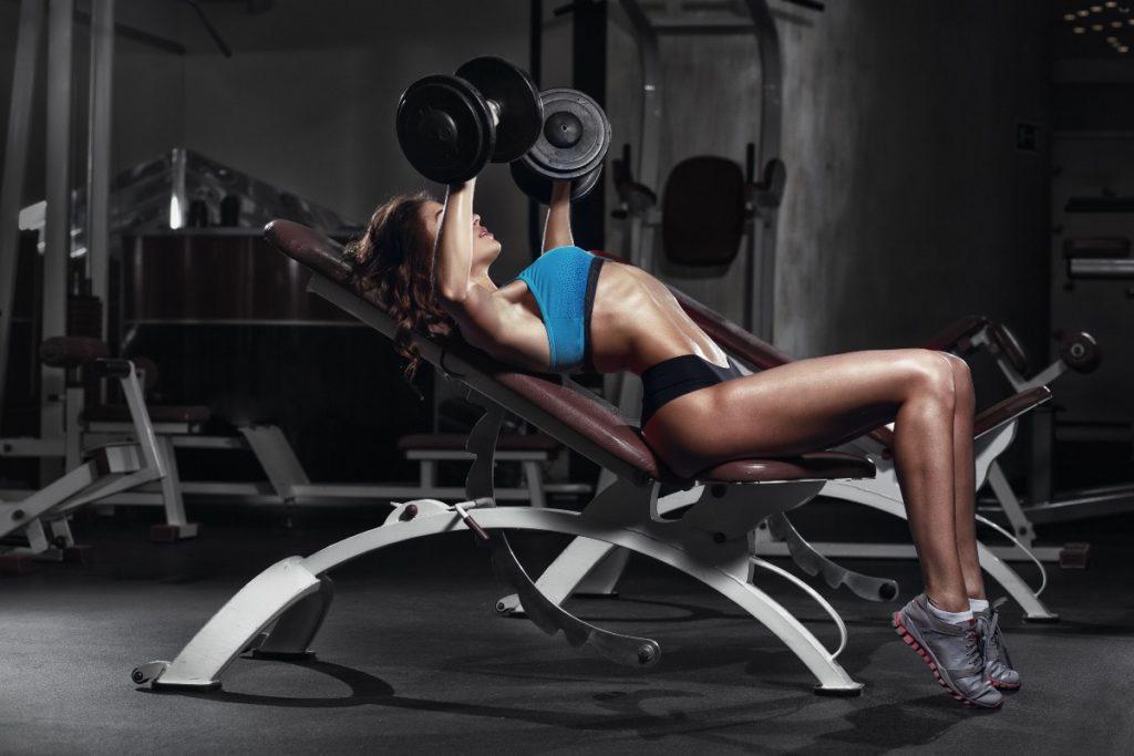 bodybuilder fitness gym 1024x683 헬스장 초보자를 위한 운동 순서 및 방법 안내