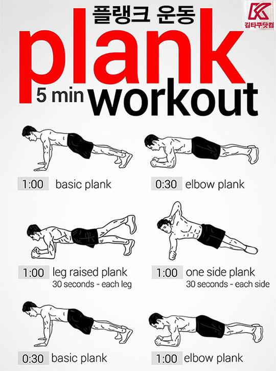 plank variation exercises 헬스장 초보자를 위한 운동 순서 및 방법 안내