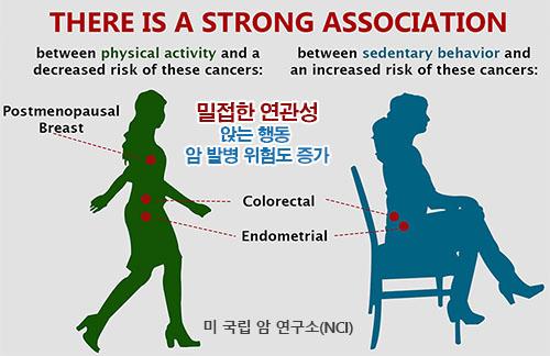 앉는 행동 암발병 오래 앉아있으면 수명단축! 장시간 착석은 운동으로 해결 안돼...
