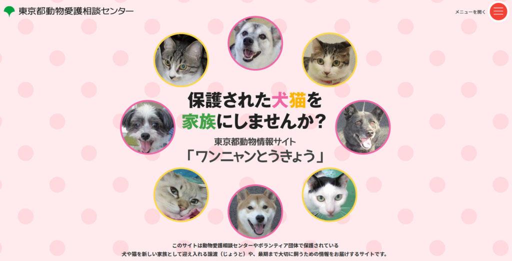 애완동물 무료분양 1024x522 도쿄도, 애완동물 무료분양 정보공유사이트 구축