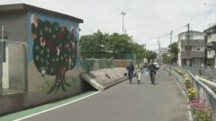 지진 초등학생사망 240x135 붉은 불개미 요코하마에서도 발견! 물리면 두드러기가..