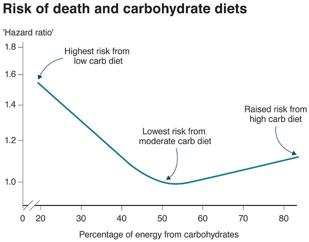턴수화물 열량 저탄수화물 식단은 기대수명을 단축시킨다