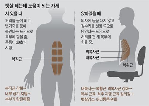 드로인 호흡 요통에 특효 3초 스트레칭 체조와 코어근육 강화 드로인 운동법