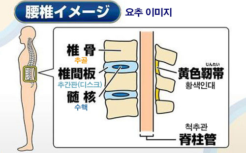 %EC%9A%94%EC%B6%94 요통에 특효 3초 스트레칭 체조와 코어근육 강화 드로인 운동법