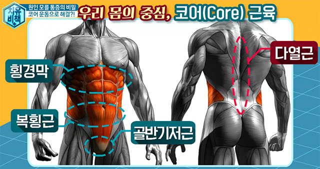 코어근육 요통에 특효 3초 스트레칭 체조와 코어근육 강화 드로인 운동법