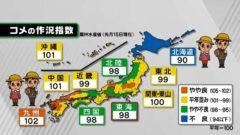 쌀작황지수 240x135 2019년 새 일왕 즉위일 휴일! 일본 골든위크 연휴 10일