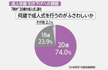 성년연령 일본 성년의 날 성인식, 미래는 어둡다 62.8%! SNS이용률은?