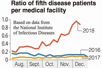 fifth disease 일본 도쿄 사과병(전염성 홍반) 유행! 임신부는 주의! 손씻는 방법