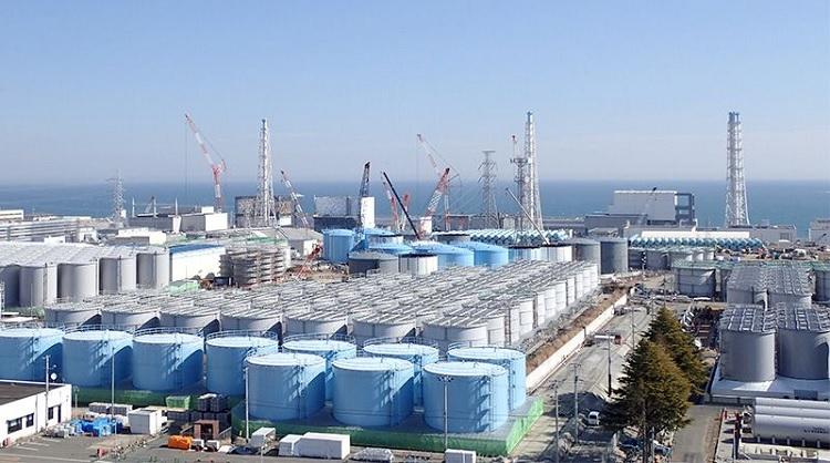 Fukushima Daiichi [그린피스 보고서] 일본 후쿠시마 원전 방사성 오염수 위기