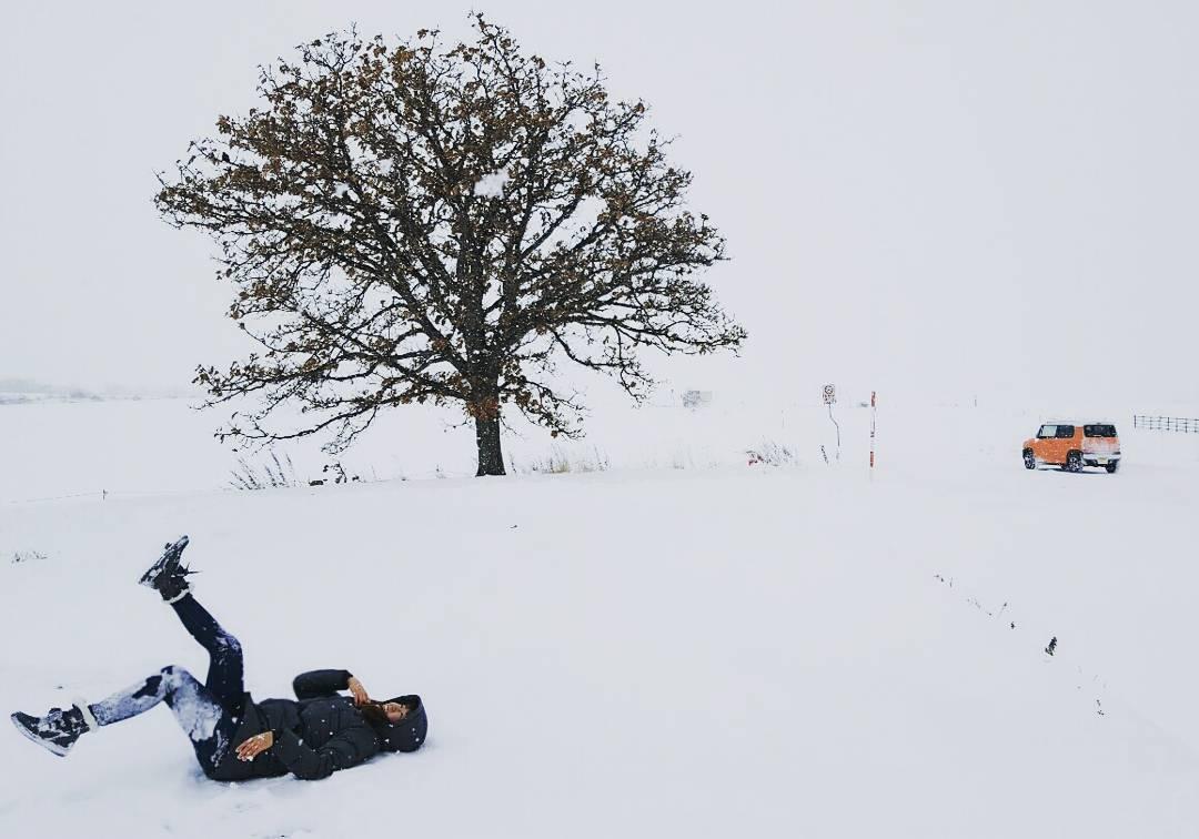 15258740 1846550102225923 1541516478962991104 n 홋카이도 여행 겨울편지 비에이 세븐스타 나무(Seven Stars Tree)