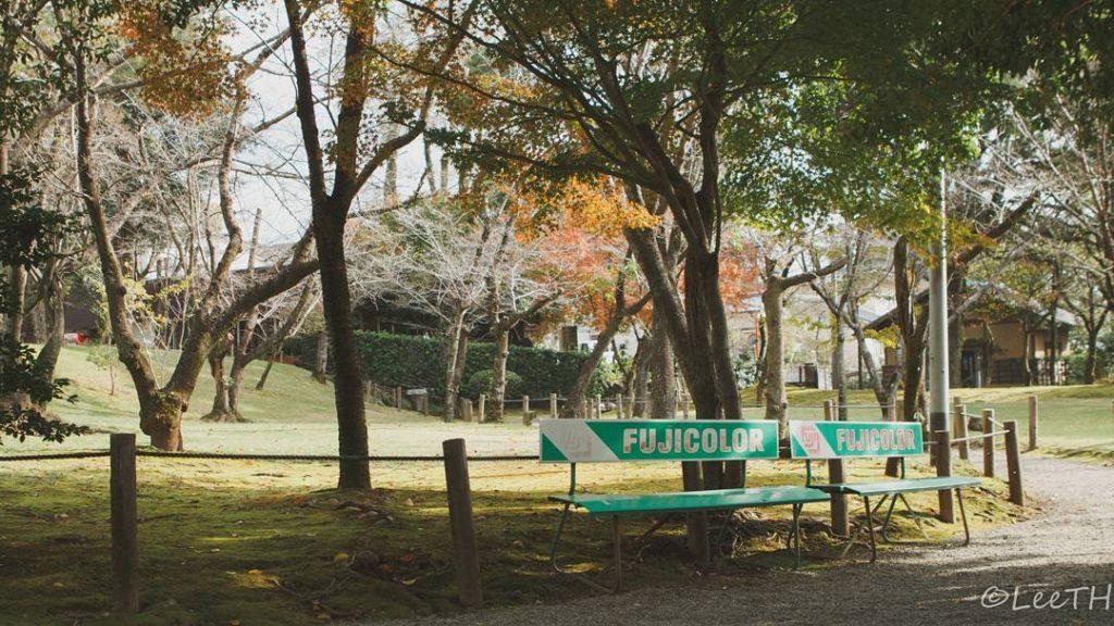 kumamoto suizenji 1024x576 일본 큐슈 구마모토 스이젠지공원