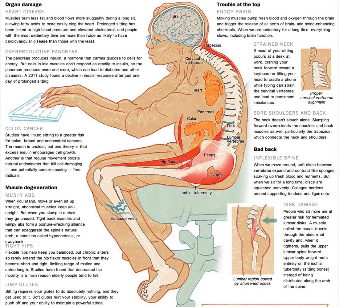 infographic on sitting 오래 앉아있으면 수명단축! 장시간 착석은 운동으로 해결 안돼...