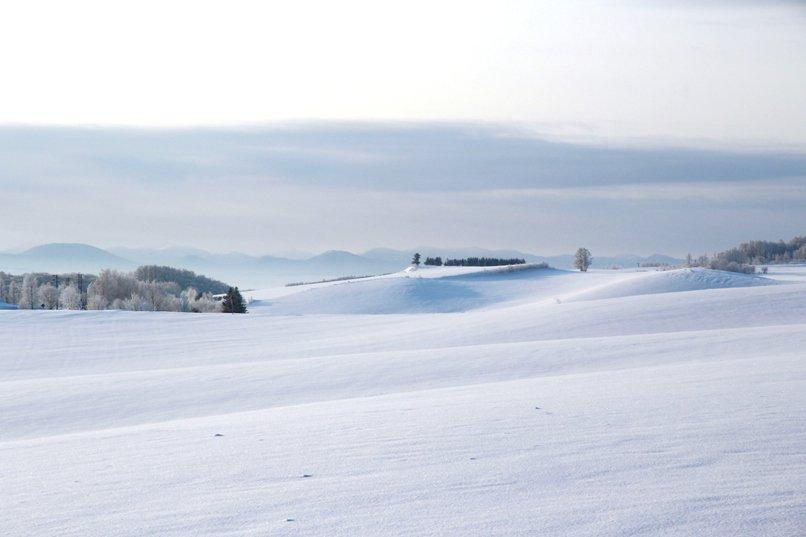 biei hokkaido snow 홋카이도 인기 관광지 비에이의 설경! 흰수염폭포 등 명소 겨울풍경