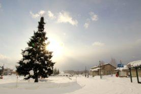 biei station 277x185 홋카이도 인기 관광지 비에이의 설경! 흰수염폭포 등 명소 겨울풍경