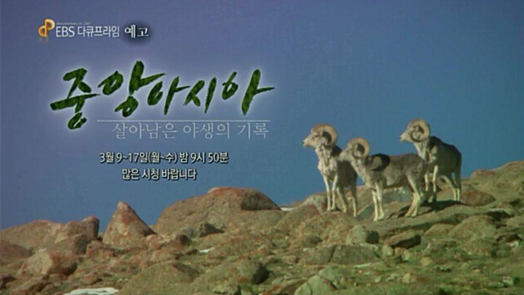 central asia 1024x576 EBS 다큐프라임   중앙아시아, 살아남은 야생의 기록 5부작