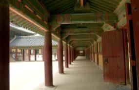 corridor 285x185 드론 공중촬영 일본 벚꽃놀이 장소, 세계 최장의 벚나무 가로수길