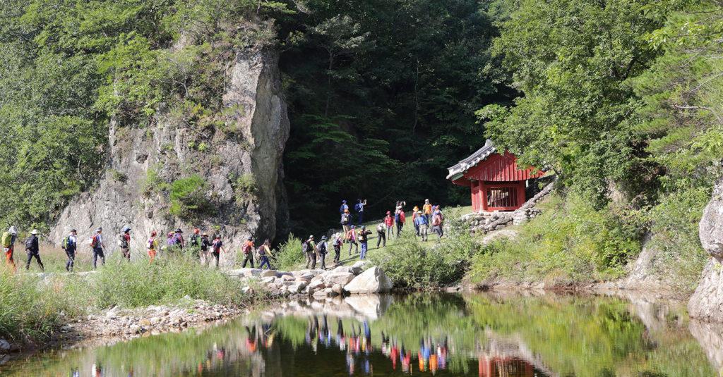 울진 금강송숲 1024x535 산림청 최고의 숲 10선 발표! 아름다운 명품숲