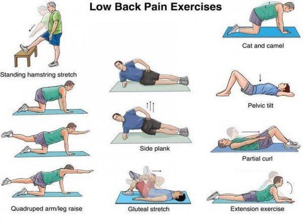 급성요통에 좋은 허리 스트레칭 운동법 급성요통 대처법! 요추염좌 치료 및 허리통증시 일어나는 방법