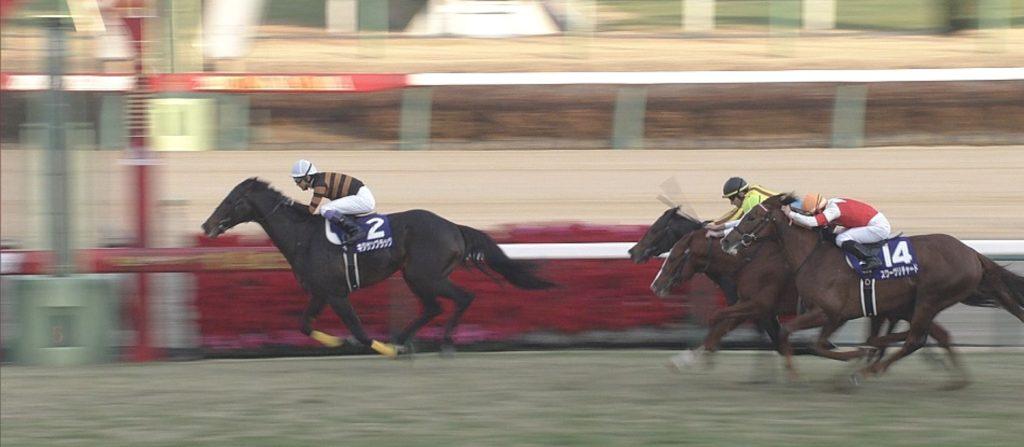 일본 경마 우승마 1024x447 일본 경마축제! 키타지마 사부로의 명마 아리마기념 그랑프리 우승