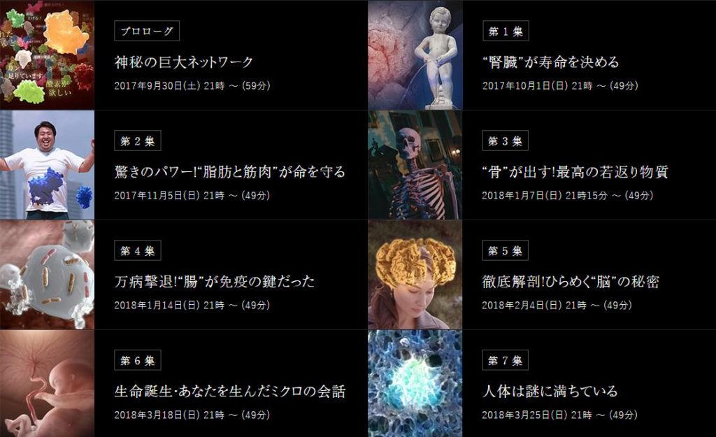 인체 신비의 네트워크 1024x625 NHK스페셜다큐! 인체 신비의 거대네트워크 시리즈