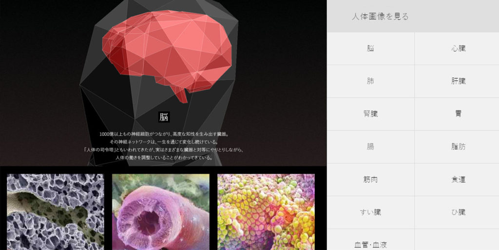 NHK 인체의 신비 1024x514 NHK스페셜다큐! 인체 신비의 거대네트워크 시리즈