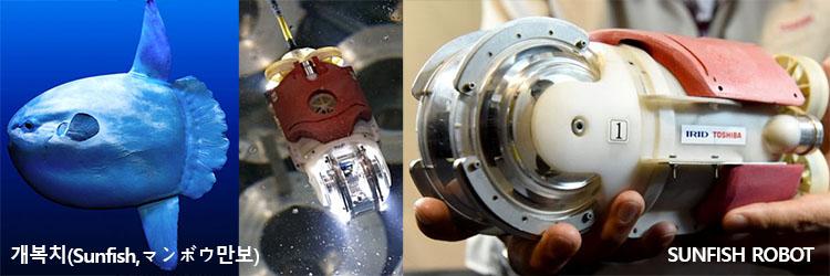 SUNFISH ROBOT 후쿠시마 원전사고 2호기 멜트다운 핵연료 잔해 발견