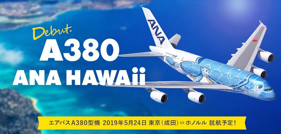 A380 HAWAI 일본 ANA항공사 세계 최대 에어버스 여객기 A380 공개